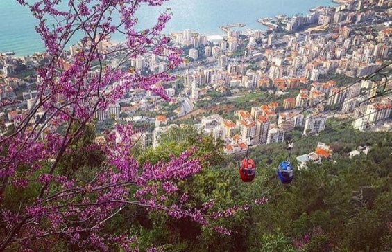 The Charming Lebanon